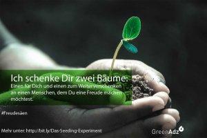 Zwei Bäume für Dich - Das Seeding-Experiment