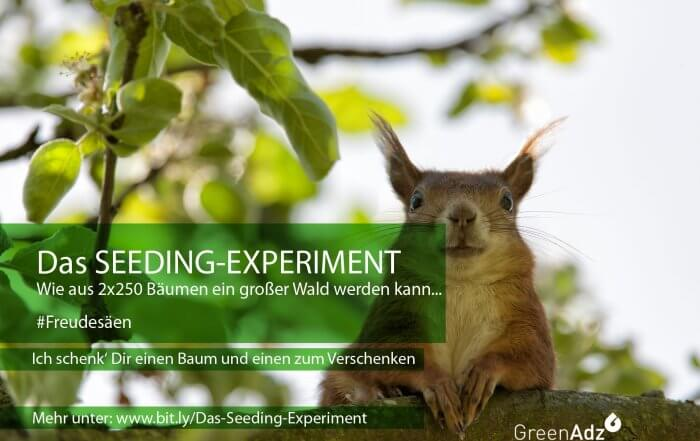 Das-Seeding-Experiment-V