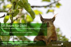 Baumschenker werden http://bit.ly/Das-Seeding-Experiment