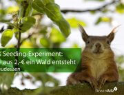 Das-Seeding-Experiment
