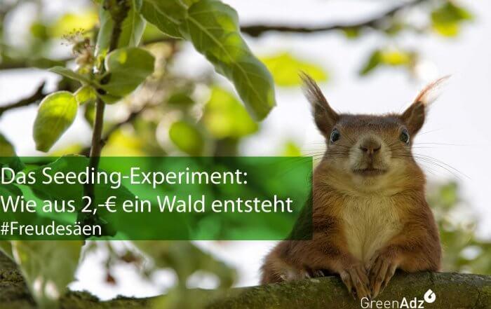 Freudesäen-Das-Seeding-Expe