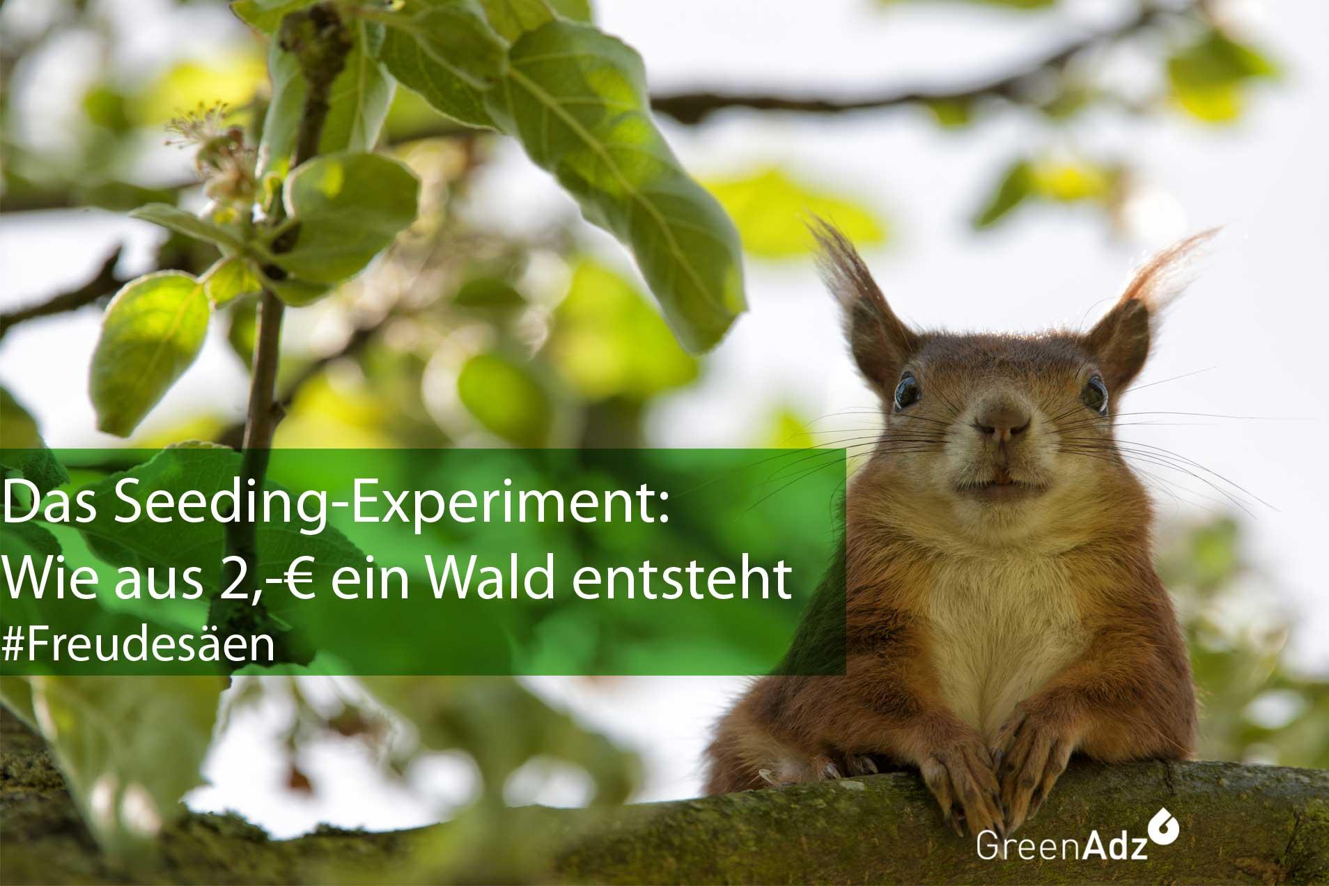 Das-Seeding-Experiment