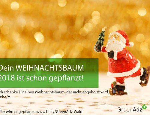 Gegen den Weihnachts-Blues: Neuen Baum pflanzen für 1,-€